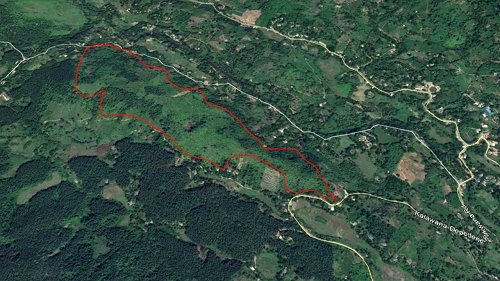 John Keells Foundation partners with Ruk Rakaganno to reforest 20 hectares of Suduwalipotha forest